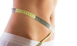 Hollywood Tans Santee: One, Three, or Six Fit Body Wraps at Hollywood Tans Santee (Up to 61% Off)