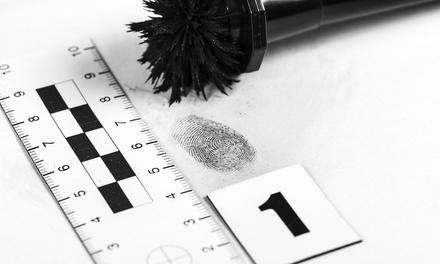 Beginner or Intermediate Criminology Online Course with Online Academies (Up to 90% Off)