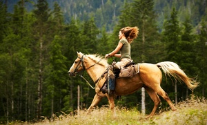 Earthquake Arabians: One, Three, or Five One-Hour Private Horseback-Riding Lessons at Earthquake Arabians (Up to 63% Off)