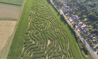 Maize Maze Entry for Three or Five at Stanhill Farm