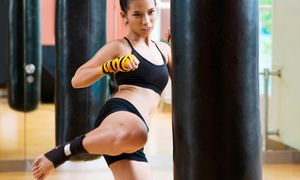 Velocity Taekwondo: 10 or 20 Kickboxing Classes at Velocity Taekwondo (Up to 76% Off)