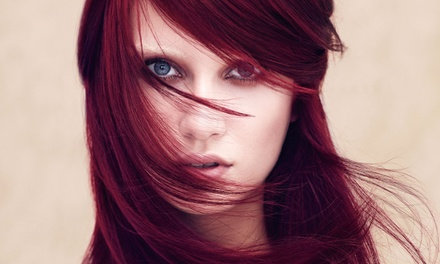 One or Two Aveda Botanical Therapy Treatments with Blowouts at Matthew Michael's Experience (64% Off)