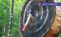 Warrior Experience for One, Two or Four at Unlimited Events Limited (Up to 53% Off)