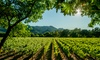 All Points Transportation - Napa / Sonoma: $275 for a Six-Hour Napa Tour for Up to Seven at All Points Transportation ($600Value)