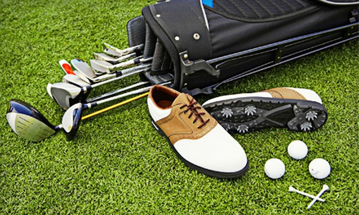 Miami Golf - South Miami: One-Hour Golf Lesson and Swing Analysis with Option for Club Fitting at Miami Golf (Up to 84% Off)