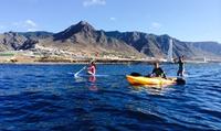 2 horas de ruta en kayak de mar o stand paddle para 2, 4 o 6 personas desde 14,90 € en Ocadila Surf School