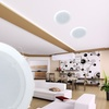 Two-Way In-Ceiling Speaker System