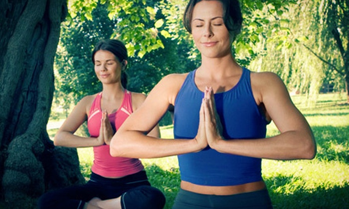 Michelle's Yoga - Niagara Falls: 5, 10, or 20 Classes at Michelle's Yoga (Up to 57% Off)