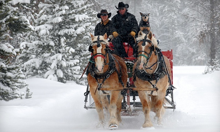 Sombrero Stables at Snow Mountain Ranch - Granby: Hot-Cocoa or Dinner Sleigh Ride at Sombrero at Snow Mountain Ranch in Granby (Up to 60% Off). Four Options Available.