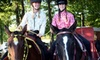 B'N'R Stables - Pelham: Introductory Horseback-Riding Lesson or 10-Week Winter Riding-Lesson Session at B'N'R Stables (Up to 56% Off)