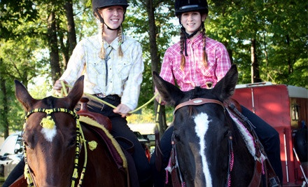 Choice of Introductory 30-Minute Private Lesson or Introductory 75-Minute Group Lesson (a $45.20 value) - B'N'R Stables in Fenwick