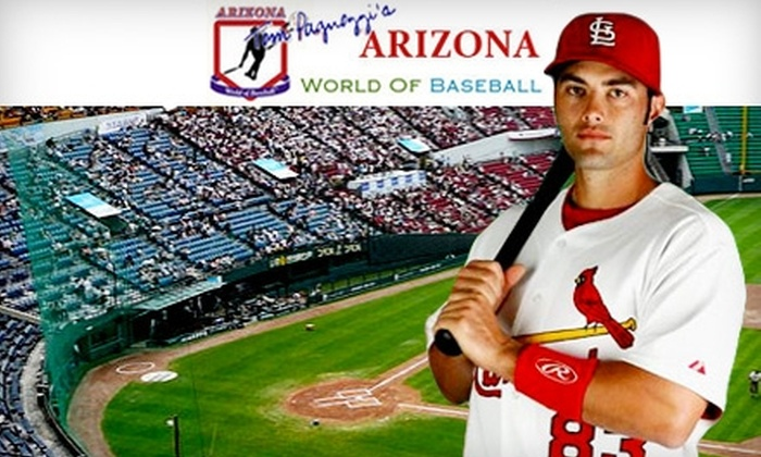Arizona World of Baseball - Dava-Lakeshore: $25 for a 30-Minute Batting, Pitching, or Catching Lesson at Arizona World of Baseball