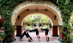 Yoga Sol: 10 Yoga Classes or Two Months of Unlimited Yoga Classes at Yoga Sol (Up to 92% Off)