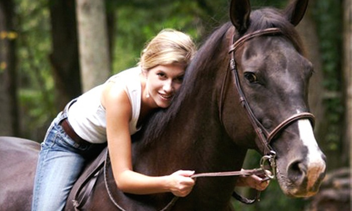 Double R Stables - Leicester: One or Four Private 60-Minute Horseback-Riding Lessons at Double R Stables (Up to 53% Off)