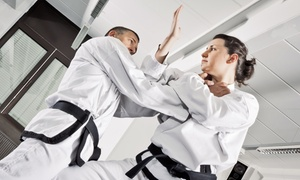 North Orange County Martial Arts: One or Two Months of Kids' or Adults' Martial Arts Classes at North Orange County Martial Arts (Up to 70% Off)