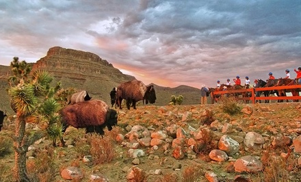 1-Night Ranch Stay, 1-Night Camping Experience, or Both at Grand Canyon Ranch in Meadview, AZ