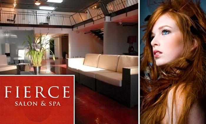 Fierce Salon & Spa - Nashville-Davidson metropolitan government (balance): $46 for a Hair Makeover at Fierce Salon & Spa ($154 Value)
