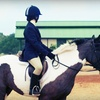 51% Off Horseback Trail Ride in Riverview