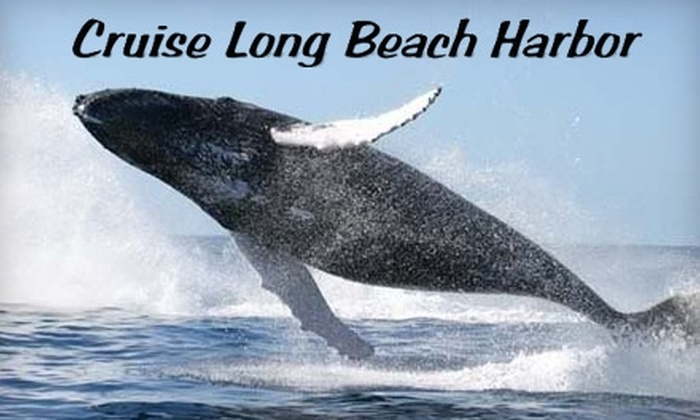Harbor Breeze Cruises - Terminal Island: $30 for Two Tickets for Whale-Watching or Dolphin and Sea Life Cruise from Harbor Breeze Cruises (Up to $60 Value)
