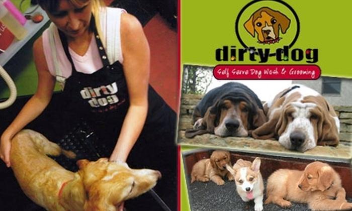 Dirty Dog Self-Serve Dog Wash - Mesa Village: $15 for $30 Worth of Self-Serve Dog Washing at Dirty Dog
