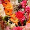 Half Off at Essence Floral Design