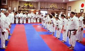 Excel Martial Arts: Four or Eight Martial-Arts Classes or Two Months of Classes at Excel Martial Artss (Up to 71% Off)