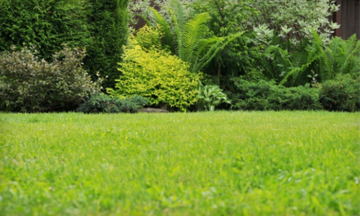 K/W Lawn Care - Victoria Hills: Lawn Mowing or Deluxe Fertilization Package from K/W Lawn Care (Up to 61% Off)