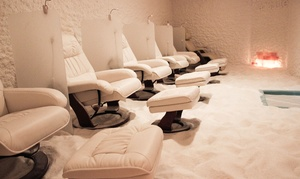 Up to 53% Off Salt-Therapy Sessions at The Salt Suite, plus 6.0% Cash Back from Ebates.