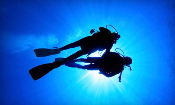 Scuba Instruction by Dennis Buice - College Park: PADI Open Water Diver or PADI Advanced Open Water Diver Course at Scuba Instruction by Dennis Buice (51% Off)
