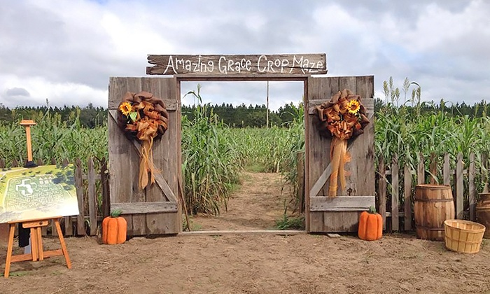Amazing Grace Crop Maze - Asbury Lake: Admission for Two, Four, or Six with Snow Cones at Amazing Grace Crop Maze (Up to 42% Off)