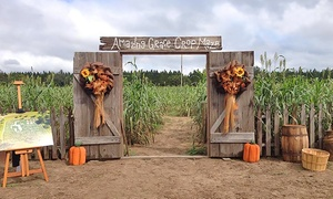 Amazing Grace Crop Maze: Admission for Two, Four, or Six with Snow Cones at Amazing Grace Crop Maze (Up to 42% Off)