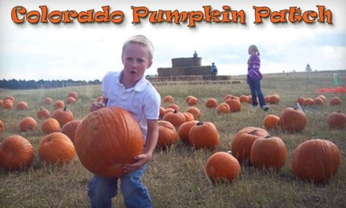 Colorado Pumpkin Patch - Black Forest-Peyton: $7 for Two Admissions to the Colorado Pumpkin Patch (Up to $14 Value)