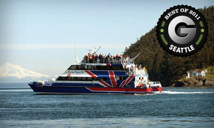 Clipper Vacations - Belltown: $41 for an Orca Whale-Watching Excursion Monday-Friday from Seattle to the San Juan Isles from Clipper Vacations (Up to $82 Value)
