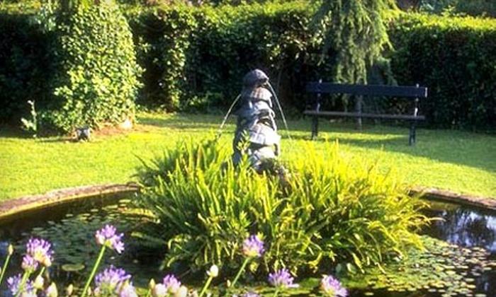 Margolis Nursery - Ypsilanti: $25 for $50 Worth of Plants and Landscaping Supplies at Margolis Nursery