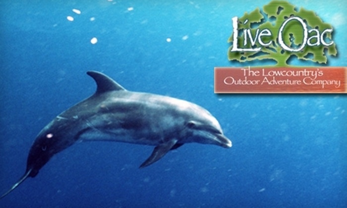 Live Oac - Hilton Head Island: $75 for a One-Hour Private Dolphin Eco-Tour from Live Oac ($150 Value)