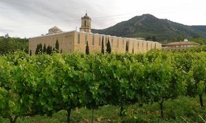 Irache: Visita guiada a la bodega con cata de vinos y aperitivo para 2 o 4 personas desde 16,90 € en Irache