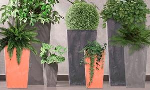 Sélection de pots de fleurs ; divers tailles au choix