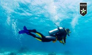 CENTRO SUB CAMPI FLEGREI: Corso di sub con moduli di teoria e uscite in mare a 49,99 €