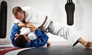 My Brazilian Jiu-Jitsu: Brazilian Jiu-Jitsu: Five ($19) or Ten ($29) Classes at My Brazilian Jiu-Jitsu (Up to $300 Value)