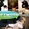 63% Off at Puppywood Pet Resort