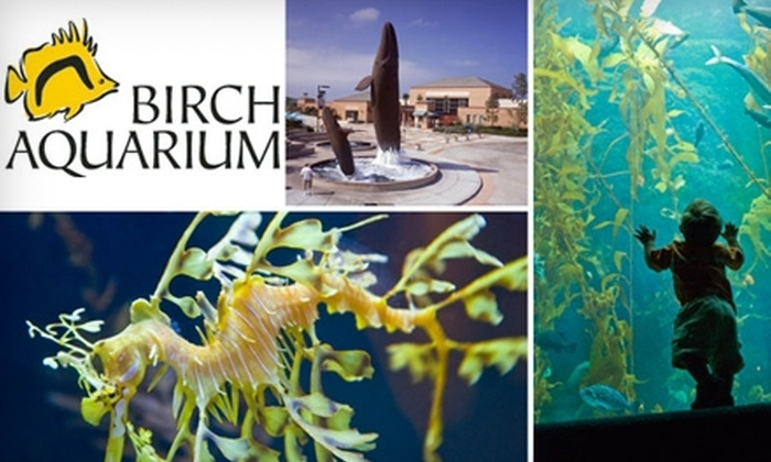 Half Off At Birch Aquarium At Scripps Birch Aquarium At Scripps Groupon
