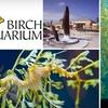 Half Off at Birch Aquarium at Scripps