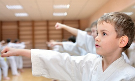 10 or 16 Martial-Arts Classes and Uniform with Option for Test and a Graduation Belt at Go2Karate (95% Off)