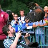 $10 for Wildlife Event for Two in East Aurora