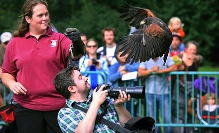 Hawk Creek Wildlife Center:
