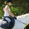 Up to 60% Off Horseback-Riding Lesson for 1 or 2