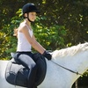 Half Off Horseback-Riding Lessons in Pearland
