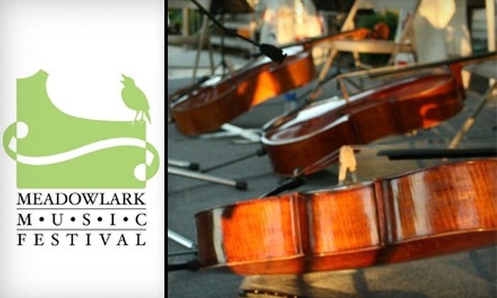 """Meadowlark Music Festival - Stevens Creek: $10 for One Ticket to Meadowlark Music Festival's """"Encore at the Vineyard"""" ($20 Value)"""