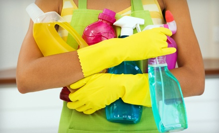 1 Two-Hour Housecleaning Session (a $120 value) - The Fig Leaf Cleaning Company in