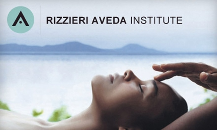 Rizzieri Aveda Institute - Voorhees: $49 for $100 Worth of Spa Services at Rizzieri Aveda Institute in Voorhees